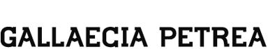 Lettering Gallaecia Petrea (uqui)